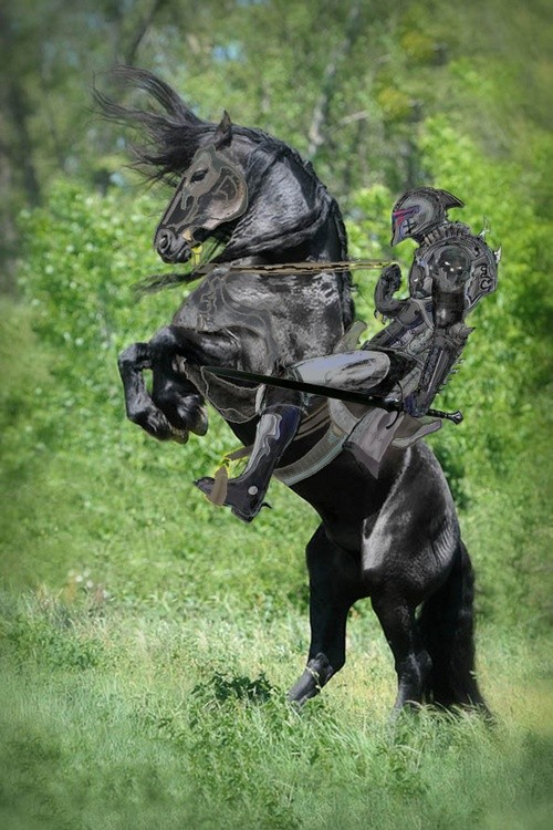 Armor- Knight