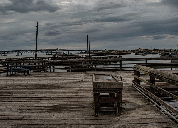 Dock on a Grey Morning- May 2020