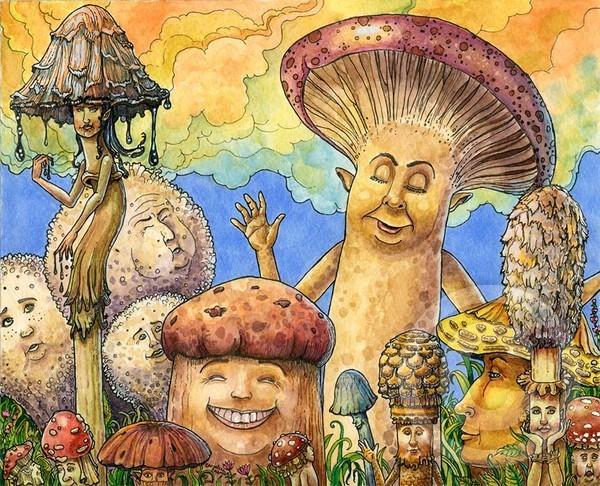Mushroom Photo-Op