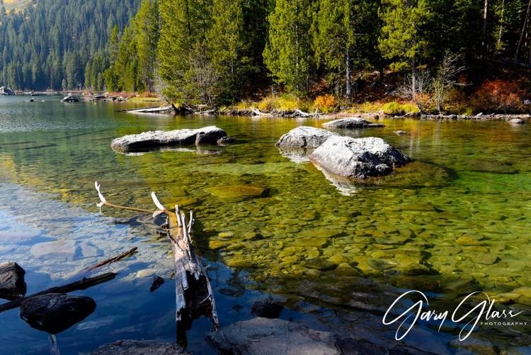 Logs and Rocks , String Lake
