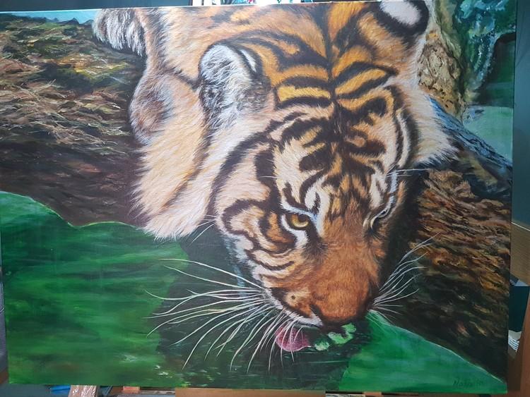 Tiger drinking on a log