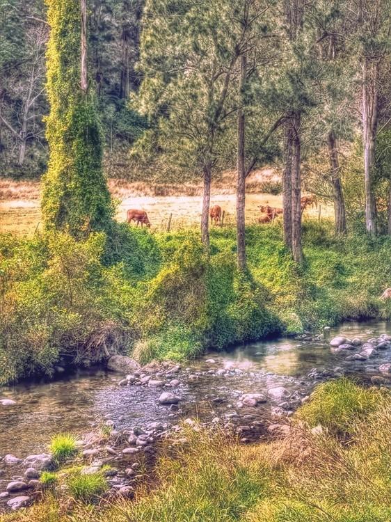 Cudlee Creek