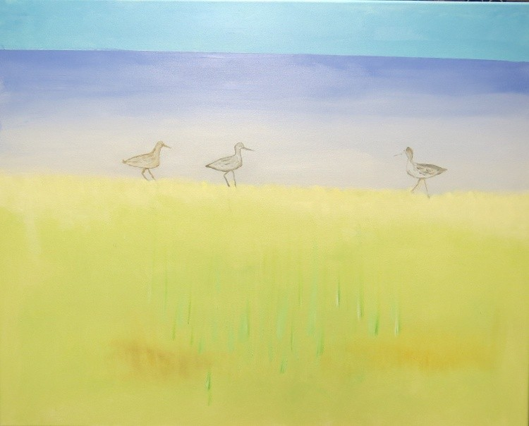 Sea Grass and Shore Birds