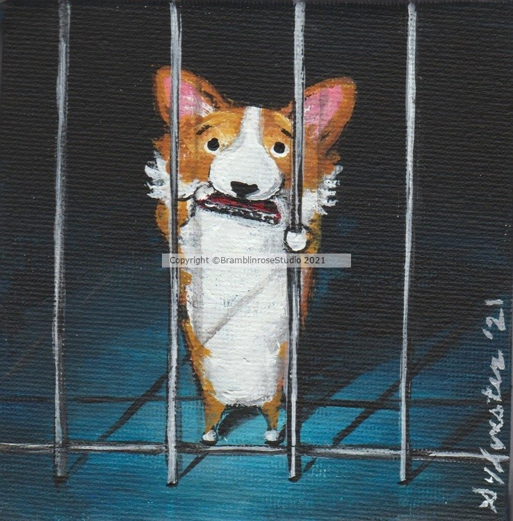 Stuck in the Kennel Blues