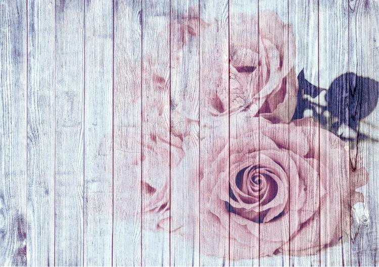 Shabby Chic Dusky Pink Roses