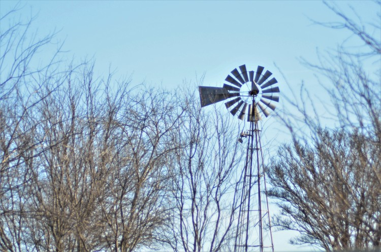 Windmill Glimpse