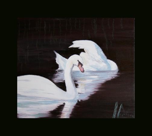 Hunter Swans