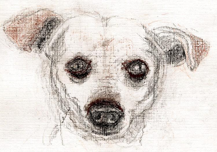 Winky Portrait Drawing
