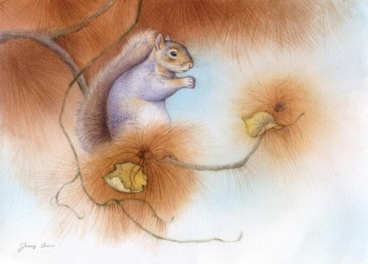 Autumn Come Softly, Gray Squirrel