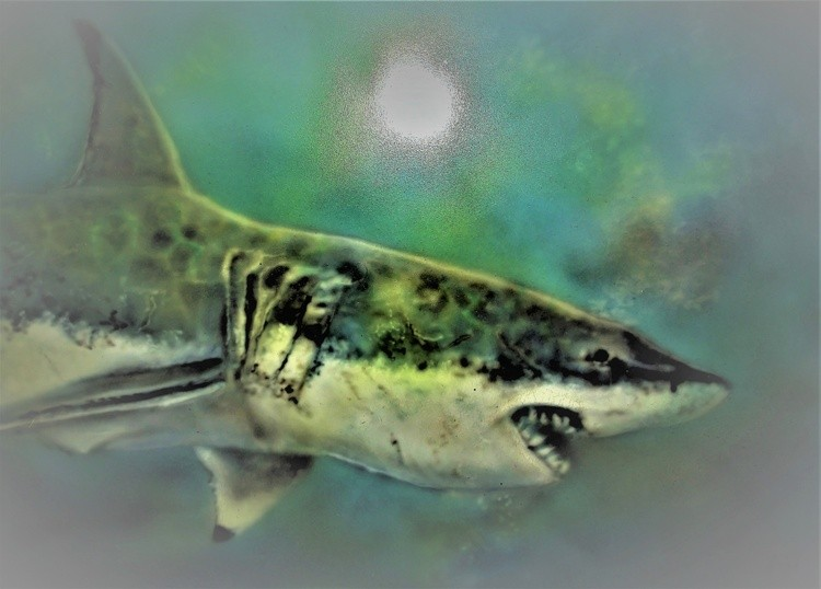 Airbrush 55 gt white shark