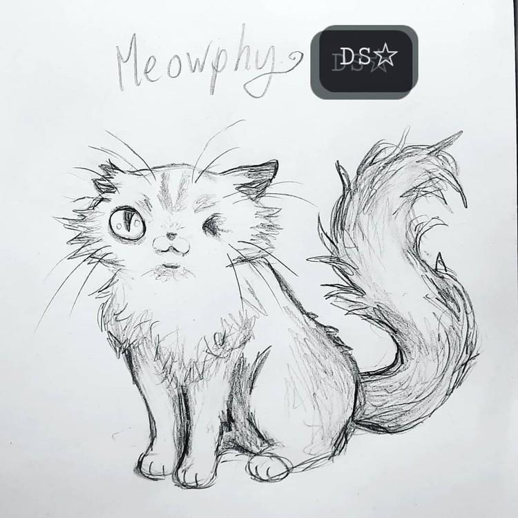 My OC Murphy has a stray cat pal