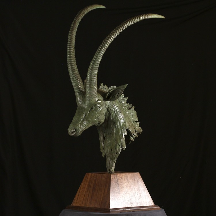 SABLE ANTELOPE BUST