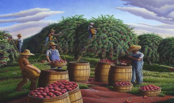 Autumn Apple Harvest - Phone Case Art