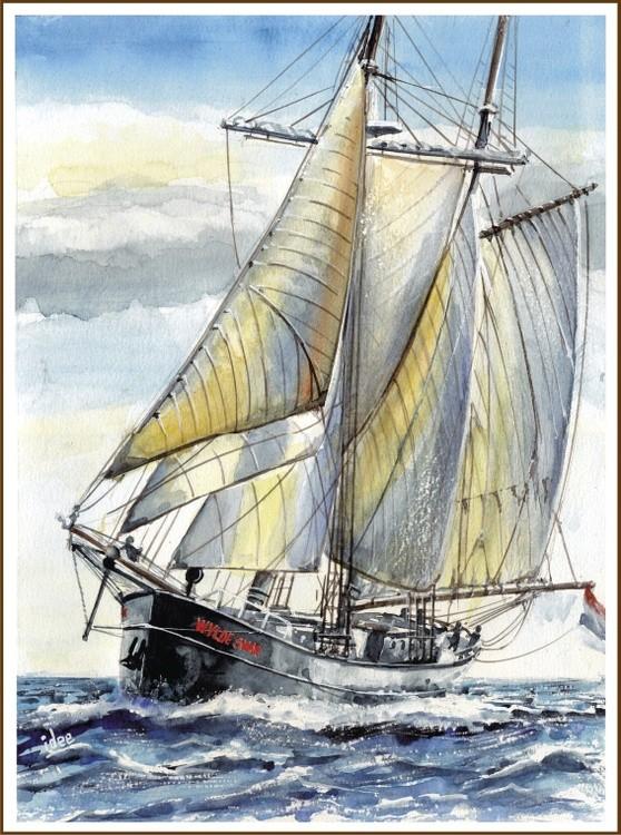 Top sail scooner Wylde Swan