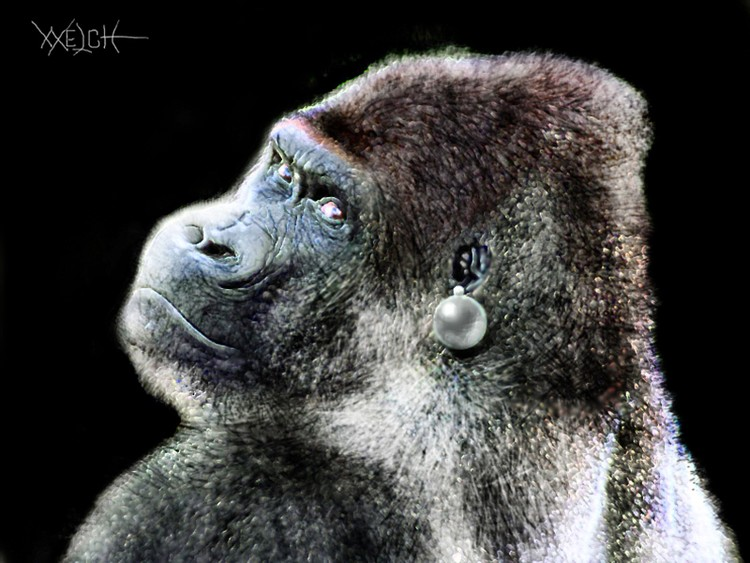 GORILLA WITH A PEARL EARRING copy