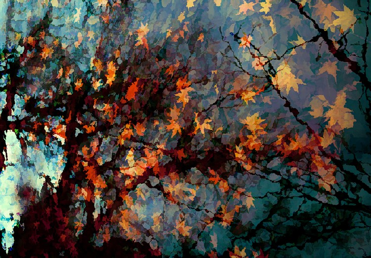 Atumn Colors