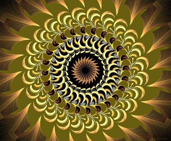 Ind=cendia Kaleidoscope