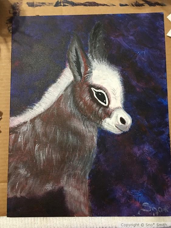 Missey's Donkey