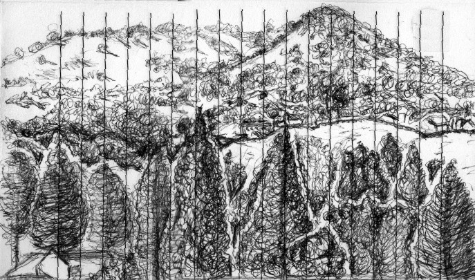 Mount Burdell Drawing