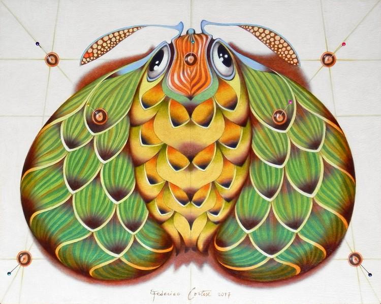 The hop moth