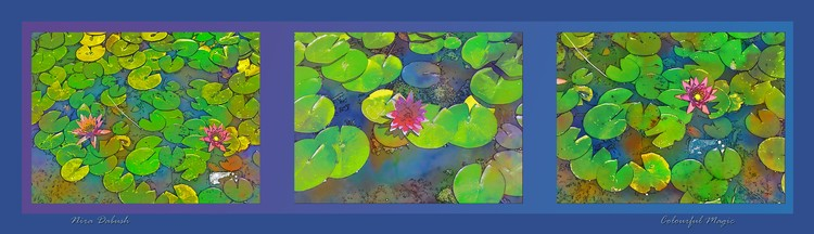 Composition In The Pond