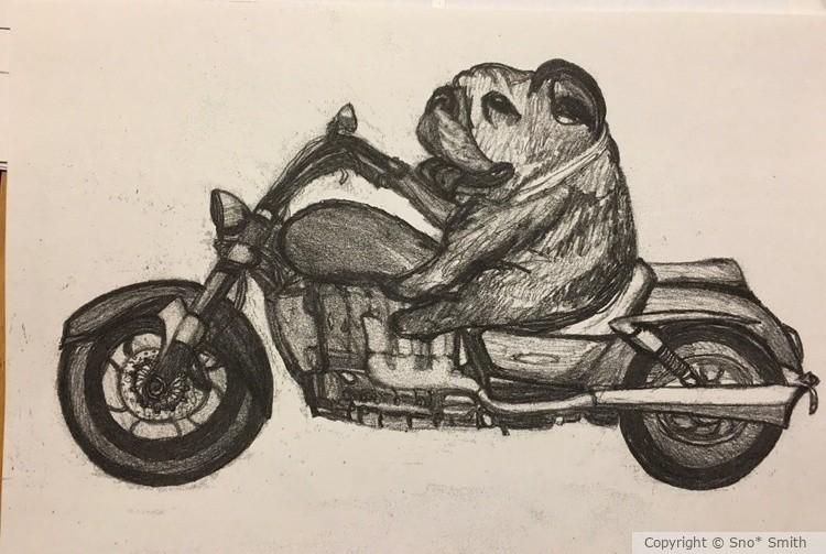 Bully Rider 1