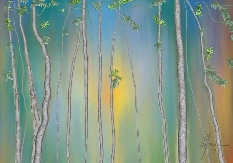 FOREST PATH-1 bak