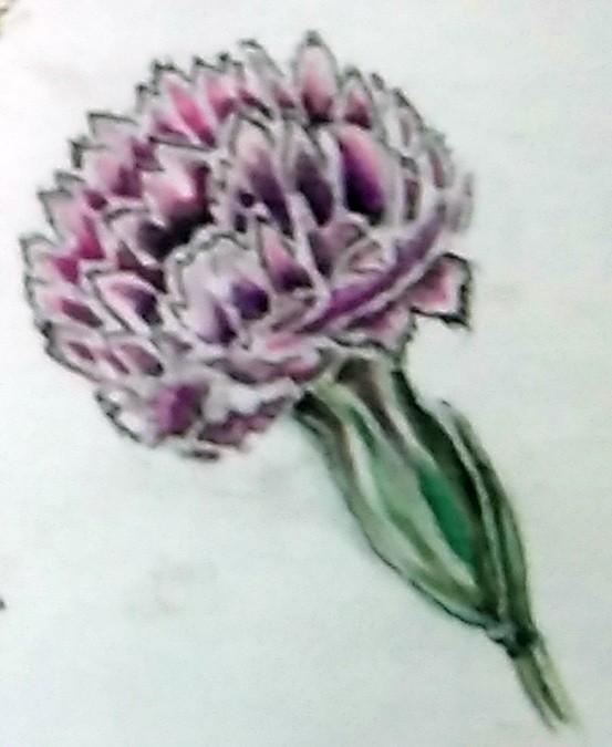 Mini Carnation Watercolor