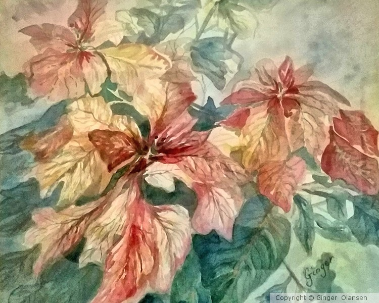 Merry Christmas Day with Poinsettia! (Copyright)