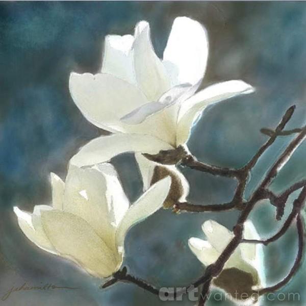 White Magnolia's