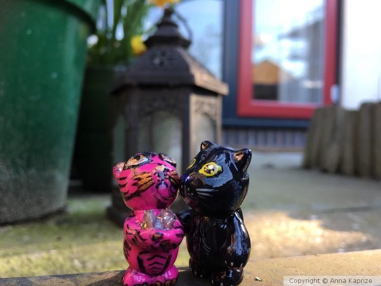 Kittens in love couple gift for her anniversary Ve
