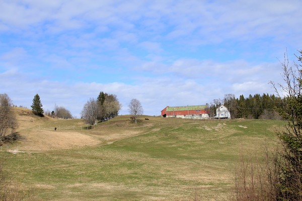 Norwegian farm in the countryside