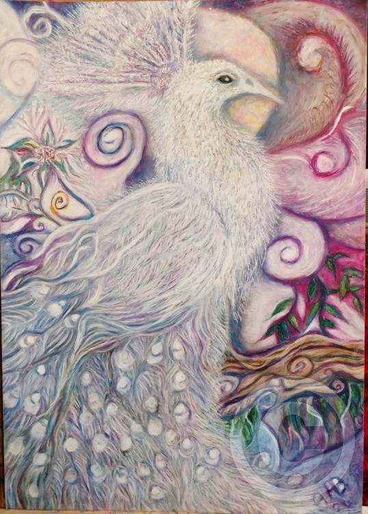 for Myanmar, White Peacock of peace, oil pastel