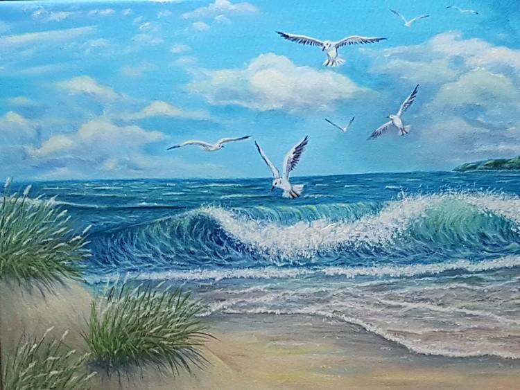 Seagulls o