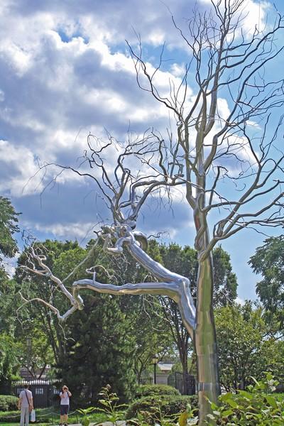 Chrome tree...