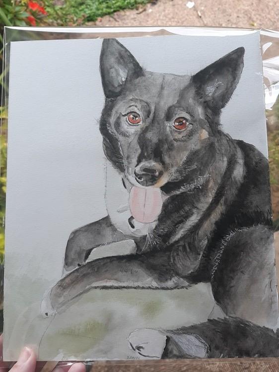 Commission portrait 10/20