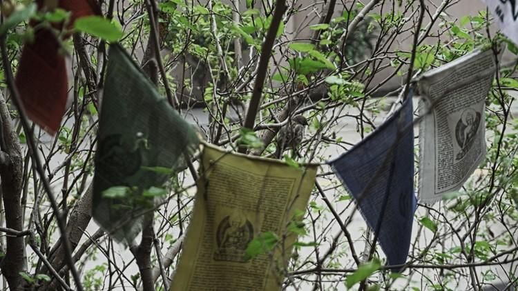 The amethyst tea garden : Singing Mulberry Tree