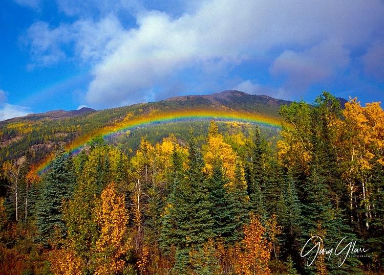 Alaska - Denali Park Rainbow