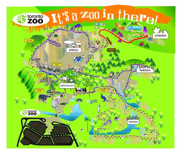 Toronto Zoo Map Redesign by Wanda Howe ArtWantedcom