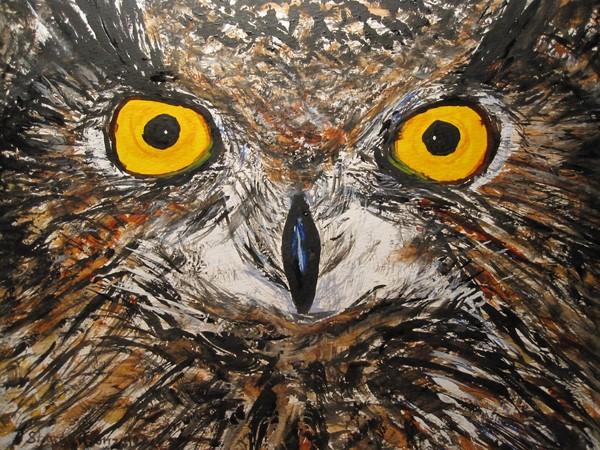 Vore owl The Upper