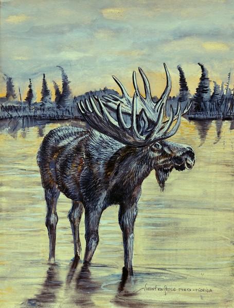 Moose Lake 3