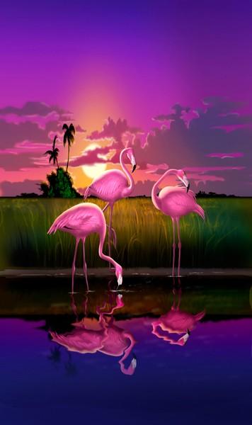Flamingos Sunset - Custom Phone Case Art