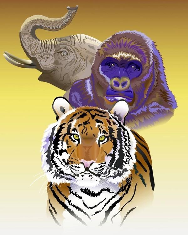 Wildlife Portrait of Tiger, Gorilla and Elephant