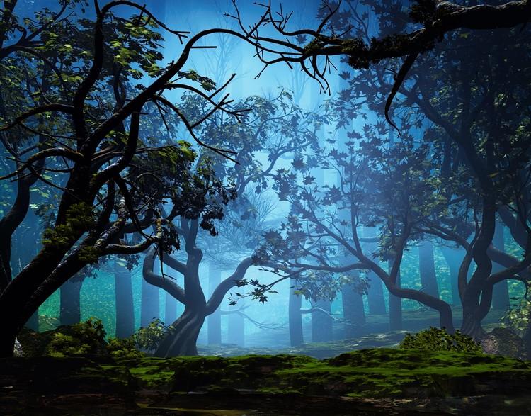 Misty Grove