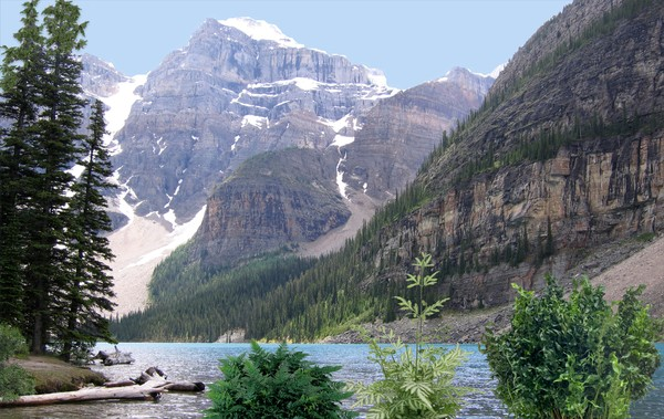 1525-Alaska Au Naturel