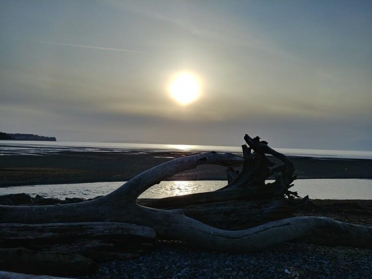 Sunset over Driftwood