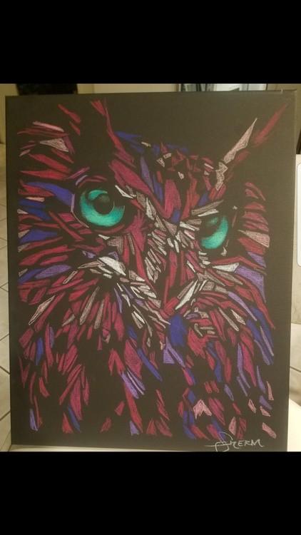 Emerald eye owl, first sketch