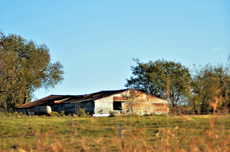 Old Barn - Grayson County