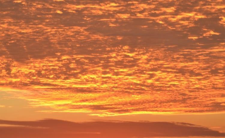 Sunrise 2.22.20