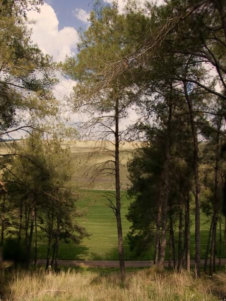 Rakafot Hill
